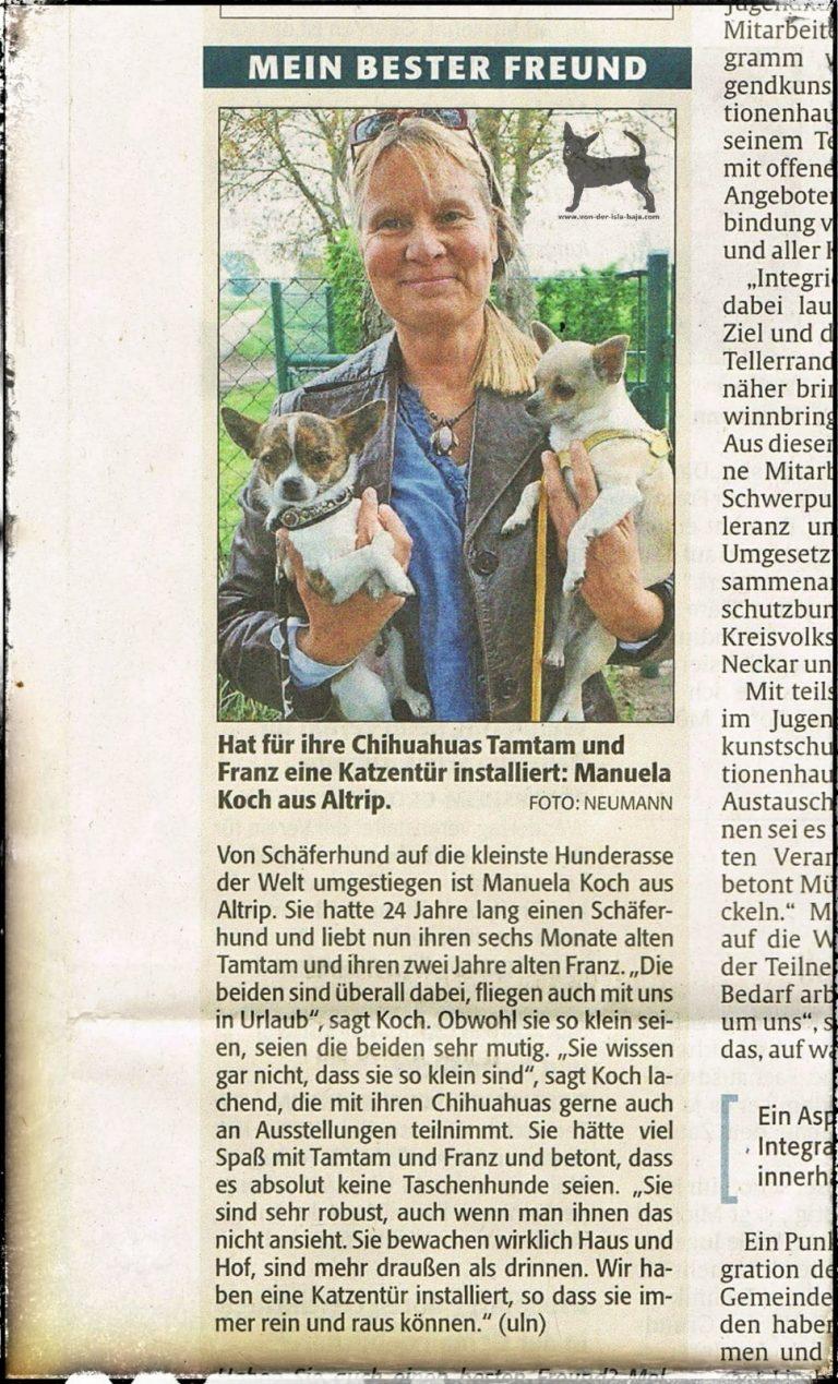 """Zeitungsbericht aus der """"RHEINPFALZ"""" von 2015."""
